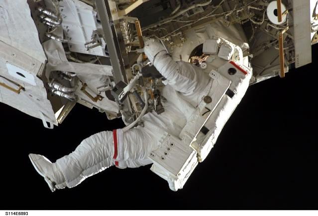 NASAさんちのアポロ犬YouTube動画>21本 ->画像>54枚
